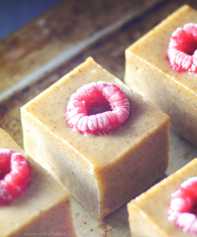 Raw Raspberry Almond Marzipan Freezer Fudge (Free from: dairy, gluten & grains, and refined sugars)